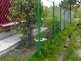 сеточны забор фото