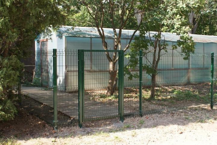 Ворота из сварной сетки фото