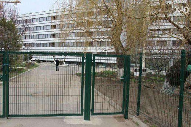 Ворота распашные из сетки фото